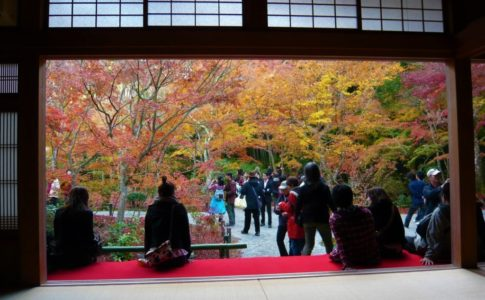 圓光寺の紅葉(京都)