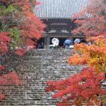 神護寺周辺の紅葉名所