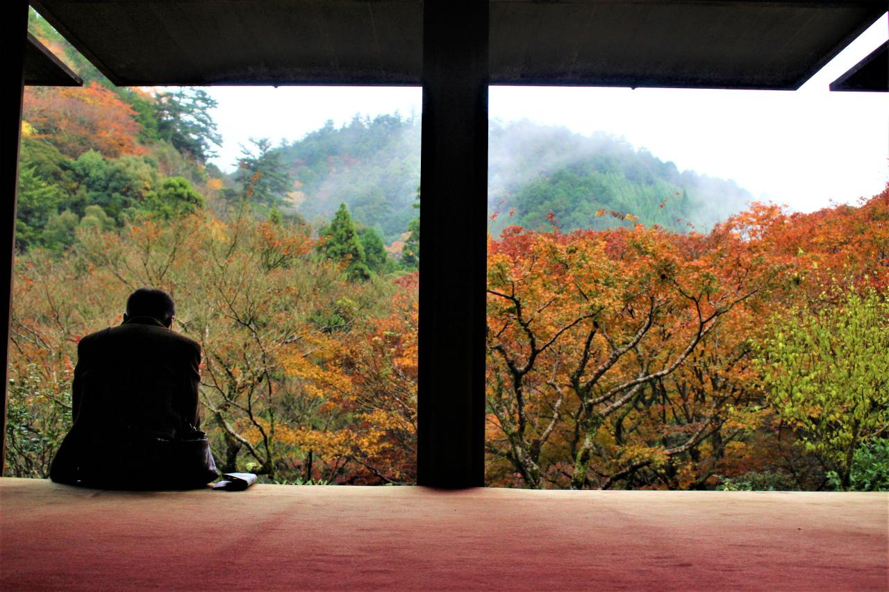 高山寺(京都)の紅葉