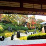光明院(東福寺塔頭)の紅葉