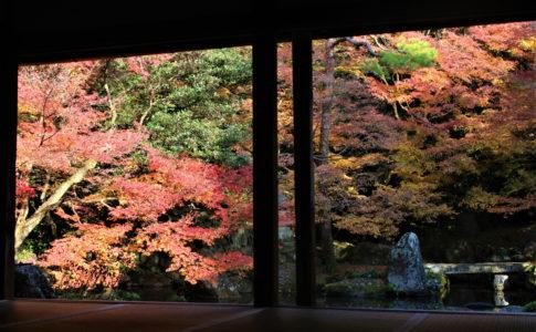 洛北蓮華寺(京都)の紅葉