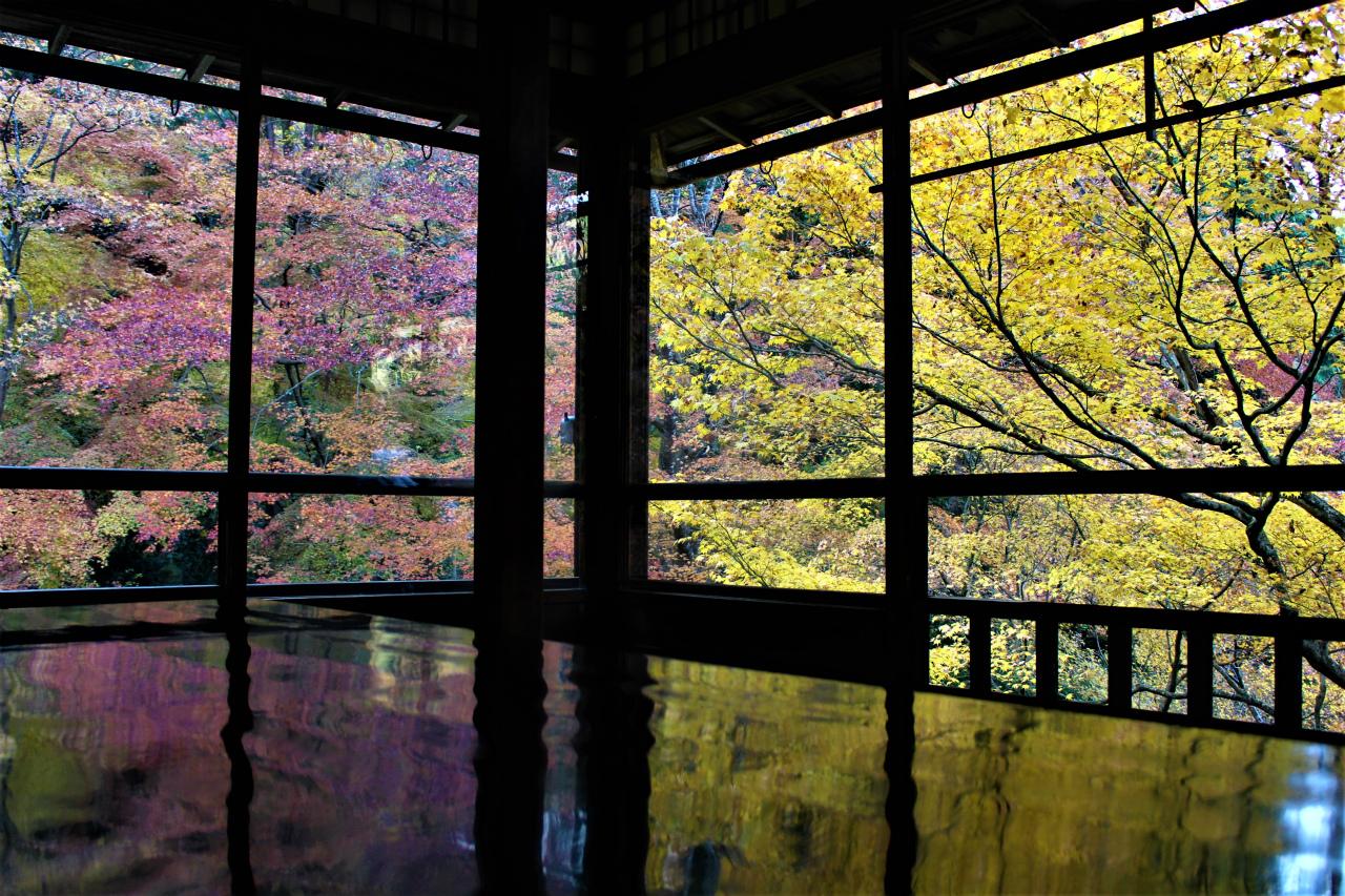 瑠璃光院(京都)の紅葉