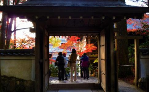 三千院(京都)の紅葉