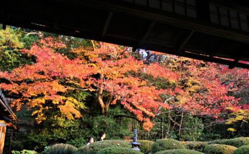 詩仙堂(京都)の紅葉