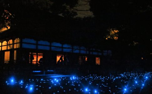 青蓮院門跡(京都)の紅葉