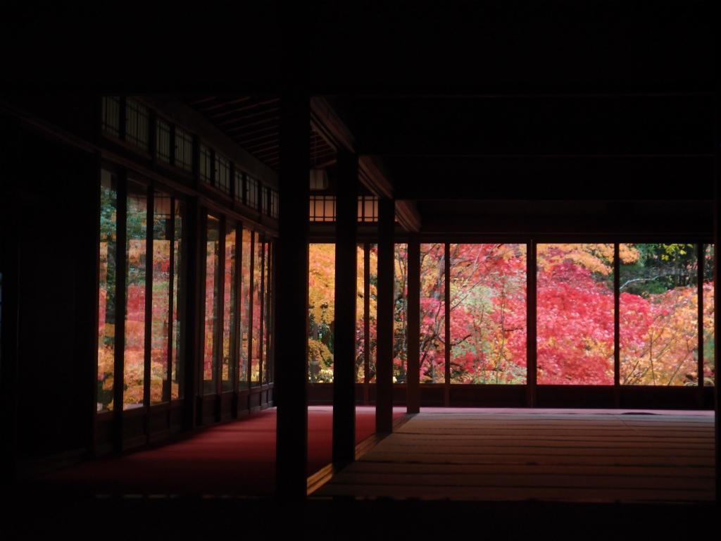 天授庵(京都)の紅葉