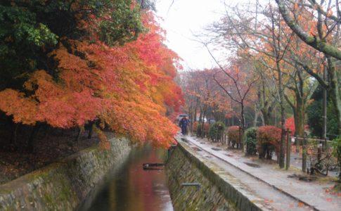 哲学の道の紅葉