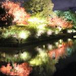 東寺(京都)の紅葉
