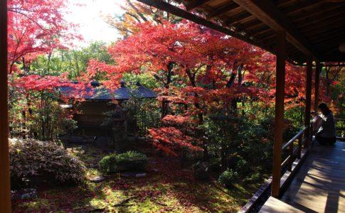 大法院の紅葉(京都)