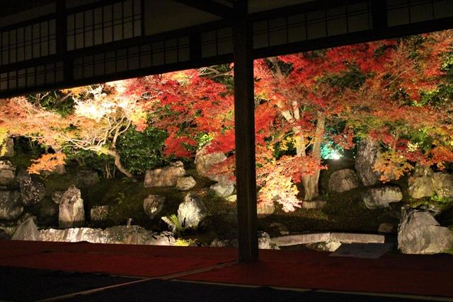圓徳院の紅葉・ライトアップ