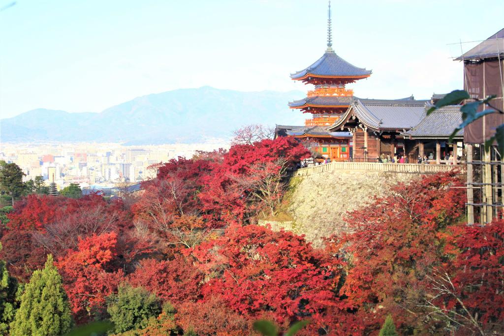 清水寺(京都)の紅葉