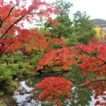 等持院の紅葉